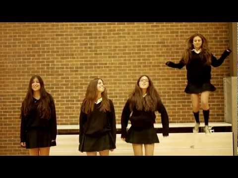 Baixar Fun.: We Are Young ft. Janelle Monáe (Bialik High School)