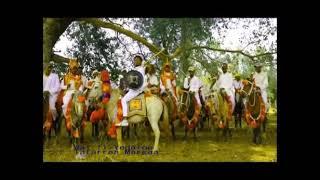 Sirba Afaan Oromoo Mp3 Fast Download Free - [Mp3to band]