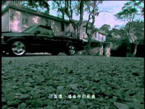 張韶涵-都只因為你-官方完整版MV