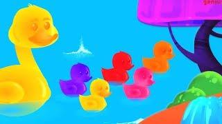 เป็ดน้อย ๆ ห้าตัว | เด็กบ๊องสำหรับเด็ก | 5 Little Ducks | Oh My Genius Thailand | เพลง เด็ก อนุบาล