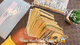 🌟2020 MONEY CHALLENGES   HOW MUCH DID I SAVE? 🤑COUNT WITH ME