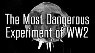 Demon Core: The Unused Third Atomic Bomb of WW2