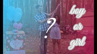 BABY GENDER REVEAL! A WEEKEND VLOG   Isabella Tracy 