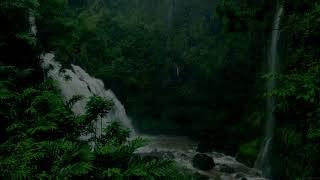 Música para DORMIR con Sonido de Lluvia y Naturaleza   Relajar la Mente   YouTube