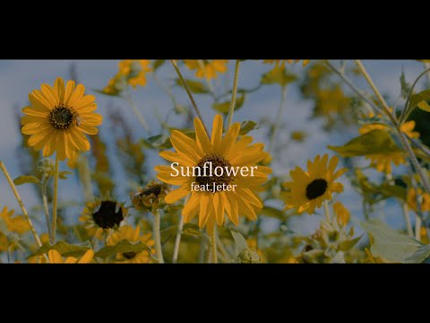 FARMHOUSE - Sunflower feat. Jeter (official music video)