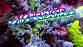 High PH VS SPS Growth?! Soda Lime, Kalkwasser, Potassium Hydroxide