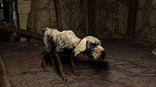 Path of Exile: Blood Guard Hound Pet
