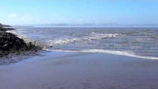 Tsunami in San Francisco Bay, March 11, 2011