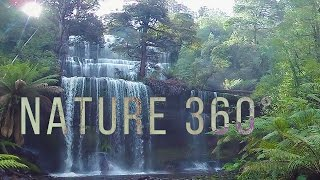 Virtual Nature 360° - 5K Nature Meditation for Gear VR, Oculus and Daydream