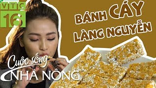 Bánh Cáy làng Nguyễn - đặc sản quê lúa Thái Bình | VTC16