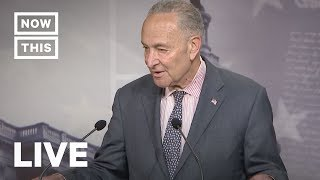 Chuck Schumer Speaks About Election Security   NowThis