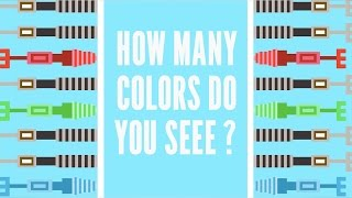 The Science of Color Blindness