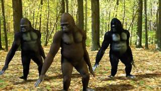 Ego - The Crazy Things We Do Official Music Video (Dancing Gorillas)