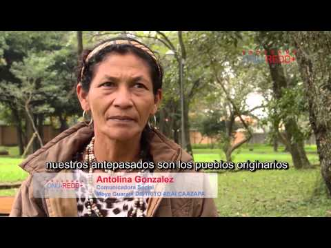 Bosques y cambio climático bajo la mirada de los pueblos originarios de Paraguay