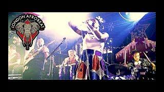 London Afrobeat Collective - LIVE at Rock City [Nottingham]