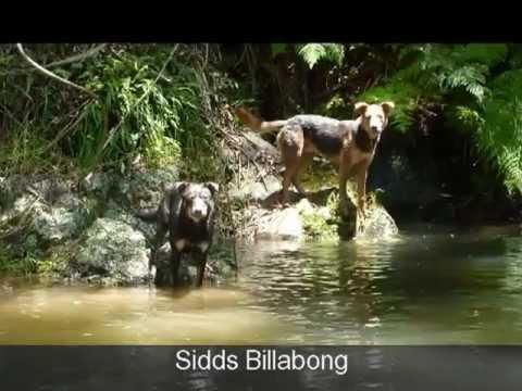 Big Back Yard - Waterholes & Creeks