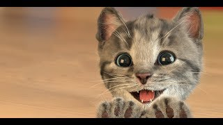 Best Pet Cute Baby Cat Care Kids Games - Little Kitten Learning For Toddlers & Children