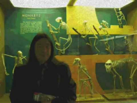 """SKELETONS OF WASHINGTON D.C. with original music """"CORONAL EJECTION"""" by Austen Brauker"""