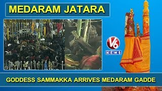 Live Updates From Medaram Jatara | Goddess Sammakka Arrives Medaram Gadde | V6 News