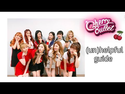a long but helpful guide to Cherry Bullet 🍒