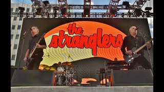 The Stranglers (Full Set) Punk Rock Bowling 2019