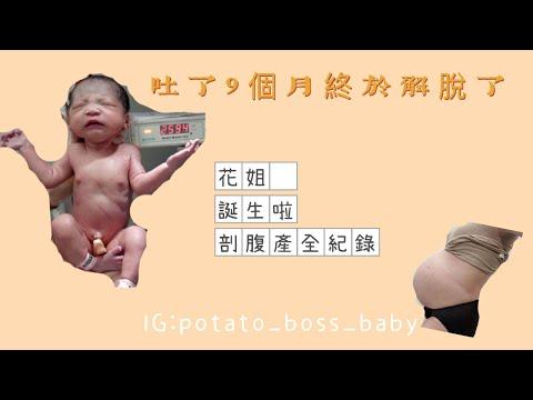 花母剖腹紀錄/全程孕期孕吐/桃園禾馨 (內有剖腹影片斟酌觀看)
