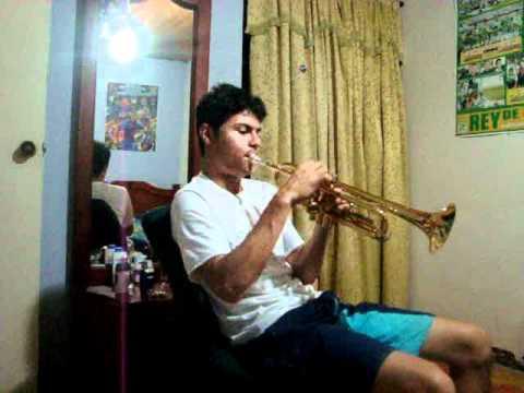 llorando se fue (lambada) cover trompeta