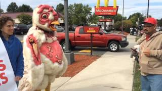 Watch: 7-foot tall, abused chicken leads protest outside Springfield McDonald's