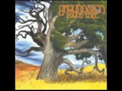 Baixar Groundation - Young Tree (Full Album)
