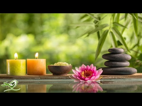 Relaxing Piano Music: Water Sounds, Spa Music, Yoga Music, Sleep Music ★110