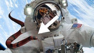 7 Terrifying REAL Things Happened in Space!