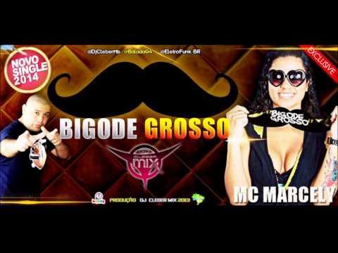 Baixar Dj Cleber Mix Feat Mc Marcely - Bigode Grosso 2014