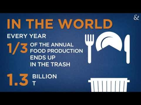 Food waste: we waste enough to feed all the starving people in the world