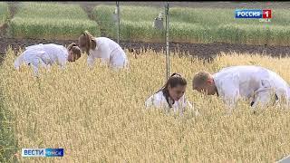 На территории аграрного университета открылся второй в России карбоновый полигон
