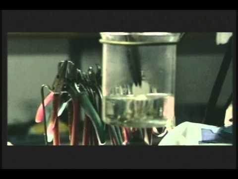 GROUP SHINHWA - 'Young Gunz' Official Music Video