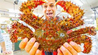 Most UNIQUE Street Food Japan - SPIKY Crab BREAKFAST + Seafood Tour of Sapporo, Hokkaido, Japan!