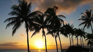 HAPPY MUSIC - Hawaiian Music - UKULELE Background, Cheerful, Joyful and Upbeat