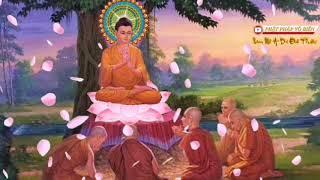 LỜI KHẤN NGUYỆN (卍) Nam ℳô ADi Đà Phật (卍)