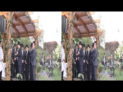 Honick Snider Wedding 08-24-14 - 3D Video