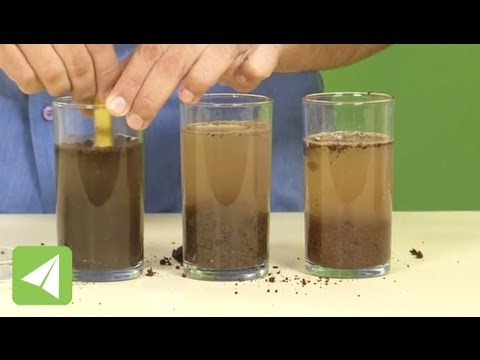 Loamy Soils Contain Sand Clay And Humus Types Of Soil