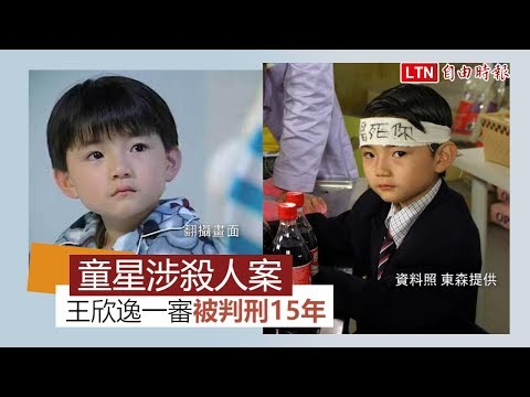 「海豚灣戀人」童星王欣逸涉殺人案 一審判刑15年