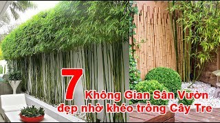 7 Không Gian Sân Vườn đẹp nhờ khéo trồng Cây Tre