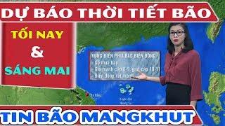 Tin Dự Báo Thời Tiết Hôm Nay 16/9 và Sáng Mai 17/9/2018 | Bản Tin Thời Tiết Hôm Nay Mới Nhất - YouTube