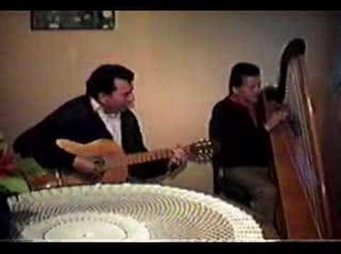 Camilo Zuñiga y Mario Garcia - Arpa - Tonadas Chilenas