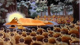 Lời Dạy Cuối Cùng Của Đức Phật Trước Khi Nhập Niết Bàn I Ai Nghe Được Cả Đời May Mắn Hạnh Phúc