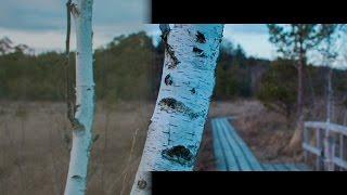 How to shoot Magic Lantern RAW video (mlv) witch Canon DSLR [workflow Part 1]