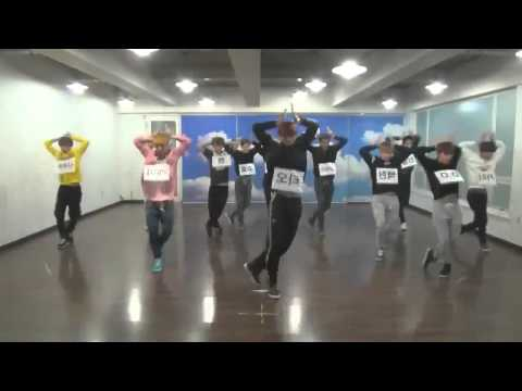 EXO WOLF Dance mirrored