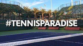Djokovic and Halep on Tennis Paradise