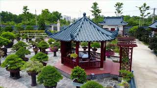Vườn cảnh nghệ thuật đẳng cấp nhất Việt Nam