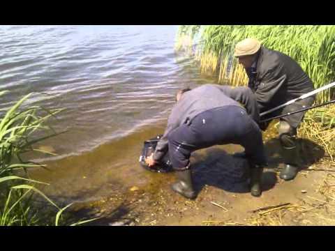 На любительской рыбалке. Беларусь